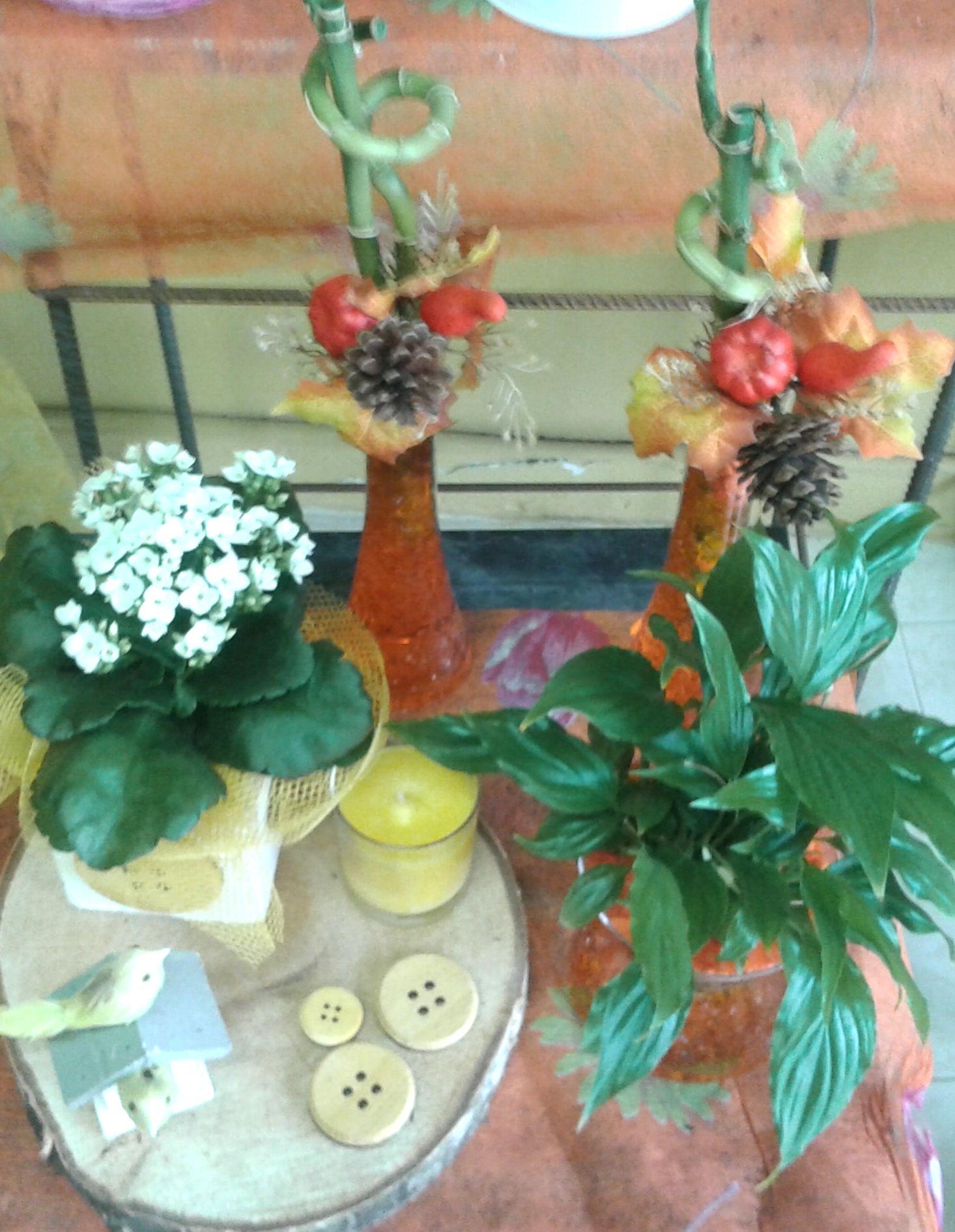 composiciones florales y centros florstil tremp - Composiciones Florales